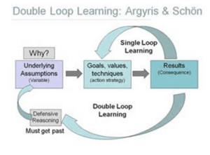 Double Loop Learing
